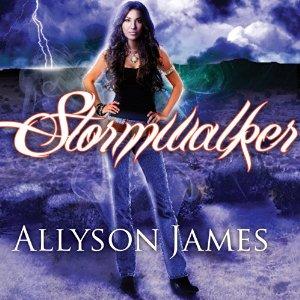 Stormwalker audiobook by Jennifer Ashley & Allyson James