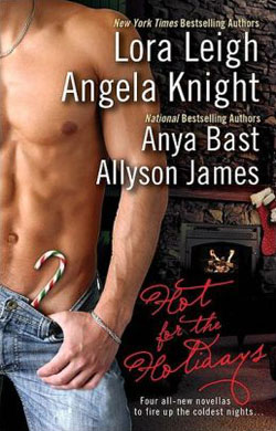 A Little Night Magic Hot for the Holidays Anthology