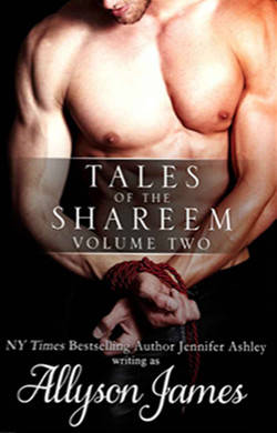 tales-of-the-shareem-vol2